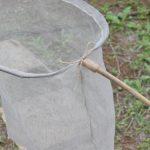 虫採り網を作ってみる